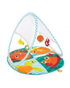 SA1253 Speciale aanbieding  Fisher Price Draagbare Gym